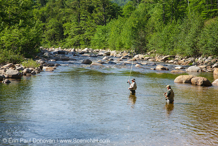 Fly fishing swift river new hampshire stock photo for Swift river fly fishing