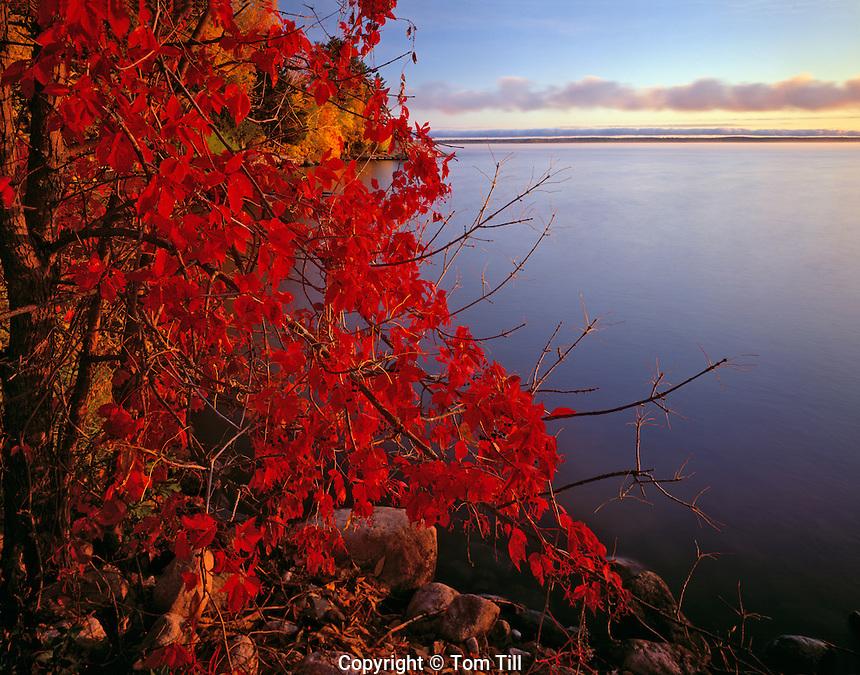 Lake shore at dawn  Voyaguars National Park, Minnesota  Kabetogama Lake  Afternoon  September