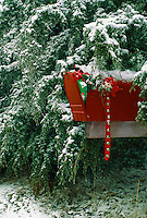 Rural road mailbox painted red and decorated for winter holidays filled with gifts. Juniper evergreen trees,