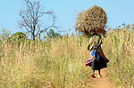 A woman carries home grass to use on the roof of her hut. A peace process that began in 2006 has brought hope to the two million people in northern Uganda who were displaced by the long war with the Lord's Resistance Army. In the village of Amuca, families have returned and are harvesting crops, building homes, and enjoying the first peace they've had for more than 20 years. The Lutheran World Federation, supported by ACT International, installed a well for this village, and will continue to accompany them as they experience peace.
