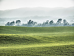 Late winter in the rolling Dunnigan Hills, Capay Hills in the distance, Yolo County, Calif.