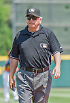 20 March 2015: MLB Umpire Larry Vanover works a Spring Training game between the Houston Astros and the Washington Nationals at Osceola County Stadium in Kissimmee, Florida. The Astros fell to the Nationals 7-5 in Grapefruit League play. Mandatory Credit: Ed Wolfstein Photo *** RAW (NEF) Image File Available ***