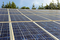 Pannelli solari collocati sul terreno del Podere Rosa, associazione no profit. .Solar panels placed on the ground of Podere Rosa, non-profit association..