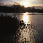 Frozen Lake, Wivenhoe, Colchester, Essex, 2009