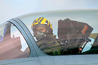 Pilot in tiger helmet. Nato Tiger Meet is an annual gathering of squadrons using the tiger as their mascot. While originally mostly a social event it is now a full military exercise. Tiger Meet 2012 was held at the Norwegian air base Ørlandet.