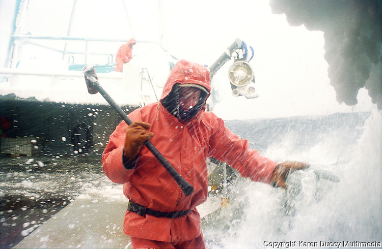 "Crewman Jeff Newton braces as a wave splashes over the side of the crab fishing vessel ""Kiska Sea"" as it fishes for opilio crab in the Bering Sea in January and February of 1995.  Also known as freezing spray, waves and wet sea air slam into the boat freezing on impact causing ice to cover the boat.  Newton is carrying a sledgehammer which he is using to beat the ice off the sides of the boat.  Boats covered in ice become top heavy and are in danger of rolling over. The Bering Sea is known for having the worst storms in the world.  Crab fishing in the Bering Sea is considered to be one of the most dangerous jobs in the world.  This fishery is managed by the Alaska Department of Fish and Game and is a sustainable fishery.  The Discovery Channel produced a TV series called ""The Deadliest Catch"" which popularized this fishery."