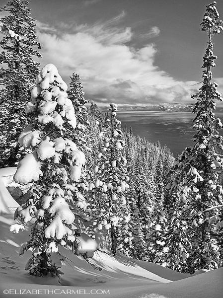 December Morning Tahoe II