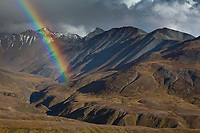 Rainbow arcs over the autumn tundra in front of the Alaska range mountains in Denali National park, interior, Alaska.