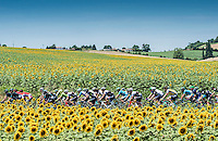 Picture by Alex Broadway/ASO/SWpix.com - 08/07/16 - Cycling - Tour de France 2016 - Stage Seven - L'Isle-Jourdain to Lac de Payolle - The Pelotonrides through the French countryside.<br />