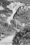 Stairs to the Beach, Crystal Cove, CA