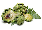 Artichoke still life.