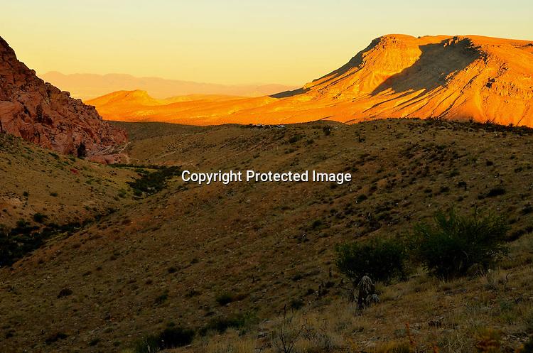 Red Rock desert floor stock photo