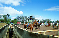 Weekly rodeos are held above the upcountry town of Makawao on Maui. The first cowboys or paniolos arrived in 1802 from Mexico and Puerto Rico.