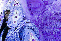 Irvin Scott, 2nd Chief of the Golden Comanches Mardi Gras Indians, proudly displays his headdress in New Orleans on February 28, 2006.