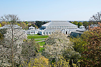 The Temperate House at Kew Gardens is the world's largest surviving Victorian glass structure.It contains plants from the Temperate regions around the world.
