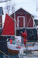 Europe/Norvège/Iles Lofoten/Nusfjord: le port de pêche au skréi - cabillaud