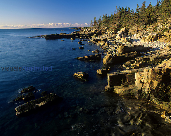 Granite shoreline, Schoodic Peninsula, Acadia National Park, Maine, USA.