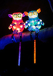 Pygmy Tarsiers lanterns during the Vivid 2016 Sydney Festival at Taronga Zoo, Sydney Australia.