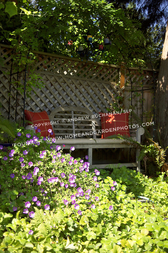 a wooden bench with colorful red cushions sits underneath a metal arbor in a cool shady spot of a sunny summer residential garden
