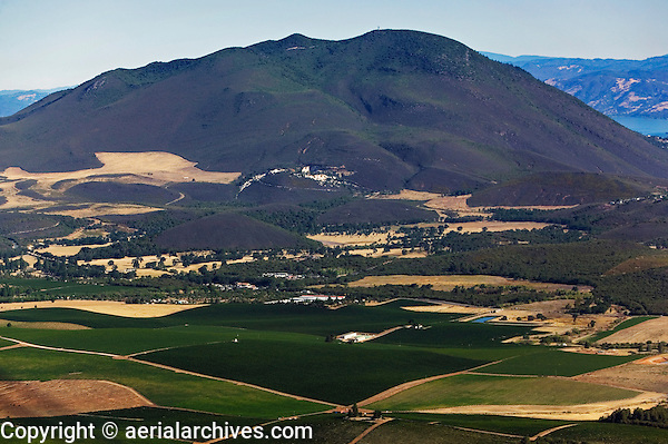 aerial photographvineyads, Kelseyville, Mount Konocti, Lake County, California