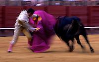 Bullfight in Seville,Spain