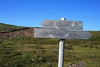 Kvernsteinsbruddene i Høgfjellet i Selbu. Skarvene og Roltdalen nasjonalpark. Foto: Bente Haarstad
