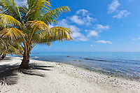 Laughing Brid Caye National Park, is a small isle 11 miles off the coast of Belize