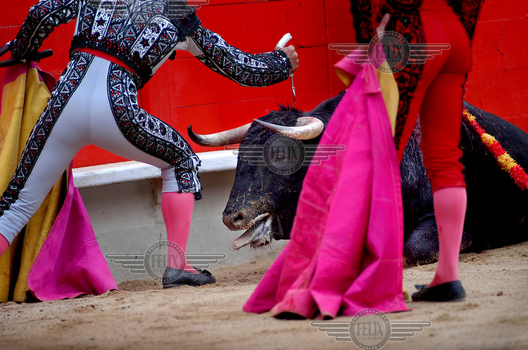 Matadors with a bull at Monumental Bull Fighting Ring in Barcelona.