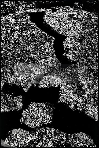 Europe, Espagne, Iles Canaries, Lanzarote: Paysage volcanique de la Geria   // Europe, Spain, Canary Islands, Lanzarote:  Volcanic landscape of the Geria