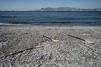 Abandoned oars on a beach where migrants arrive from Turkey, usually at dawn so as to avoid the Greek coast guard. Turkey is only 16km away, a crossing that many attempt without traffiker assistants. Kos, Greece. Sept. 5, 2015