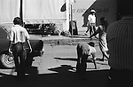 "Quadrupedal adult man hand walking Mazatlan Mexico 1973. Also known as Unertan syndrome. ""Dr Nick Humphrey the leading authority on Quadrupedal humans says of these photographs are the """"...earliest record I know of."""""