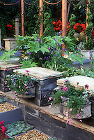 Container gardening patio with inset planters, hanging sconce type half planters, in tiered patio design with Moorish influence. Bluestone slates, columns, red flowers, pink flowers, Sempervivum succulents, tropicals, perennial hostas, spiral evergreens in planters