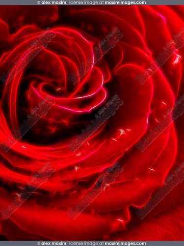 Beautiful abstract sparkling red rose petals digital artwork