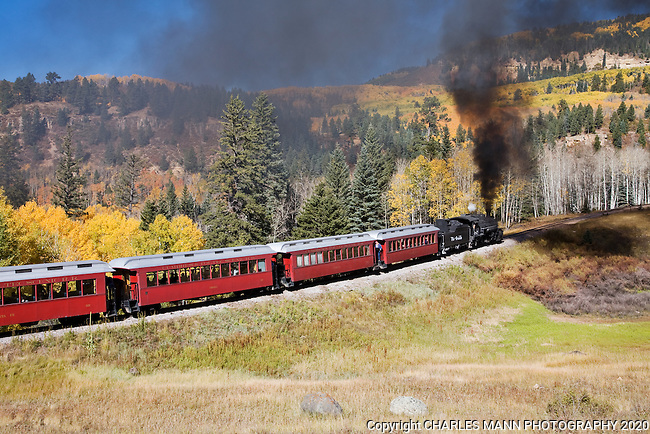 Colorful red cars provide an eye catching accent to golden aspens as the Cumbres & Toltec steam railroad begins a run up the mountian on a fall dayl near Chama, New Mexico