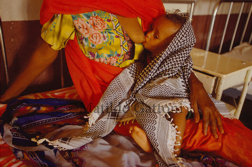 Eritrea - gash barka- Mother breastfeeding her baby suffering from severe malnutrition in a hospital. As a result of 30 years of war for independence against Ethiopia (from 1961 to 1991) and another 3 years from 1997 to 2000, there are 50,000 Eritreans currently living in internally displaced (IDP) camps throughout the country. These IDPs have fled three times in the last 10 years, each time because of renewed military conflict. They lived in relatives' homes when lucky enough, but mostly, the fled to the mountains, where they attempted to do what Eritreans do best, survive. Currently there is no Ethiopian occupation in Eritrea, but landmines prevent the IDPs from finally going home. .It is estimated that every Eritrean family lost two or three members to the war which makes the reality of the current emergency situation even more painful for Eritreans worldwide. Currently, the male population has been decreased dramatically, affecting the most fundamental socio-economic systems in the country. Among the refugee population, an overwhelming majority of families are female-headed, severely affecting agricultural production. For, IDPs in particular, 80% of households are female-headed..The unresolved border dispute with Ethiopia remains the most important drawback to Eritrea's socio-economic development, as national resources (human and material) continue to be prioritized for national defense. Eritrea is vulnerable to recurrent droughts and variable weather conditions with potentially negative effects on the 80 percent of the population that depend on agriculture and pastoralism as main sources of livelihood. The situation has been exacerbated by the unresolved border dispute, resulting in economic stagnation, lack of food security and increased susceptibility of the population to various ailments including communicable diseases and malnutrition..