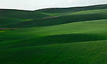 The highly productive agricultural area of the Palouse Valley in Washington