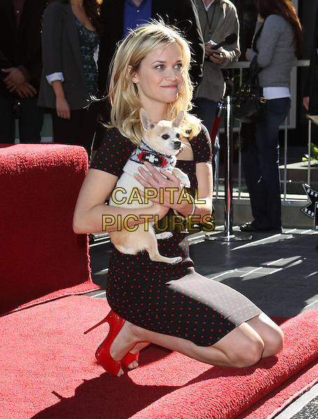 Reese Witherspoon Star on Walk of Fame Ceremony | CAPITAL ... Reese Witherspoon