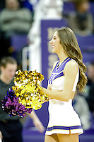 February 12, 2014:   Washington cheer member Megan Florer entertained fans during a timeout against Stanford.  Washington defeated Stanford 64-60 at Alaska Airlines Arena in Seattle, Washington.