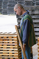 Staves. Cooperage, barrel manufacturing, Cadus, Louis Jadot, Ladoix, Beaune, Burgundy, France