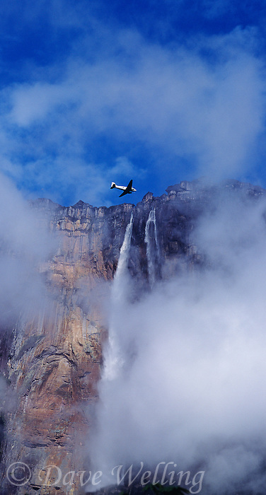 940000012 panoramic view of a dc-3 flying over Angel Falls the tallest waterfalll in the world and Auyan tepui one of the sky islands rise up from the clouds and tropical rain forest in the wild and remote Lost World area of Canaima National Park, Venezuela