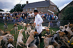 'QUANTOCK STAG HOUNDS', QUANTOCK, SOUTH SOMERSET, 1997