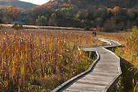Twists &amp; turns of life showing Boardwalk thru Cattail Meadow for hiking in fall with couple in distance, lovely golden light, on Appalachian Trail, NJ