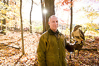 A Falconer with his Red Tail Hawk on a hunting trip during the Fall season in Rhode Island.  Falconry is a sport which involves the use of trained raptors to hunt or pursue game for humans.