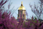 May 12, 2014; The statue of Mary atop the Golden Dome of the Main Building. Photo by Barbara Johnston/University of Notre Dame