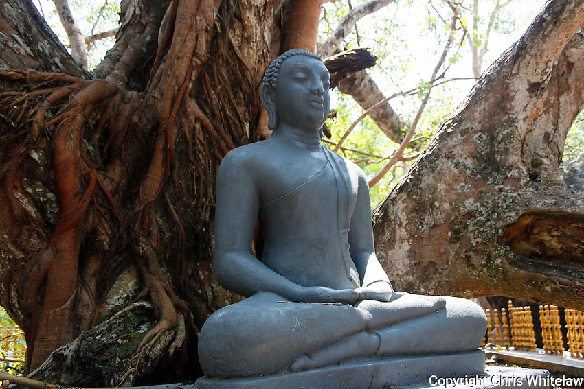 Stone-carved seated Buddha statue (meditative pose), Yatagala Raja Maha Vihara, near Unawatuna, Sri Lanka
