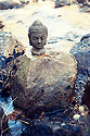 Buddha on a boulder in the river.