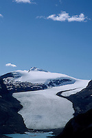Source of North Saskatchewan River at Saskatchewan Glacier viewed from Parker Ridge, summer, Banff National Park, Alberta.