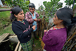 Jovita Guzman (left), an agricultural promoter, talks with Bonifacio Lopez Zacarias and Maria Luisa Mauricio Perez on the couple's farm in San Luis, a small Mam-speaking Maya village in Comitancillo, Guatemala. Guzman works for the Maya Mam Association for Investigation and Development (AMMID), which is helping community members achieve a better quality of life.