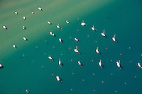 """Boats in Lake Tahoe Aerial"" - These boats were photographed in Lake Tahoe from an amphibious seaplane with the door removed."