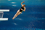 2015 MW DII Swimming & Diving